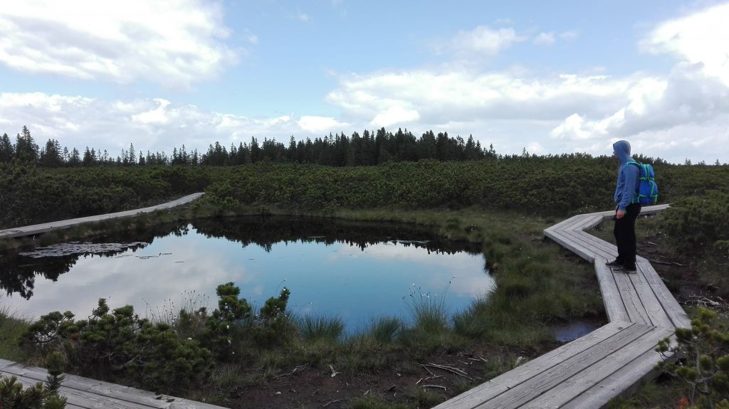 Rogla hiking trail Lovrenška jezera