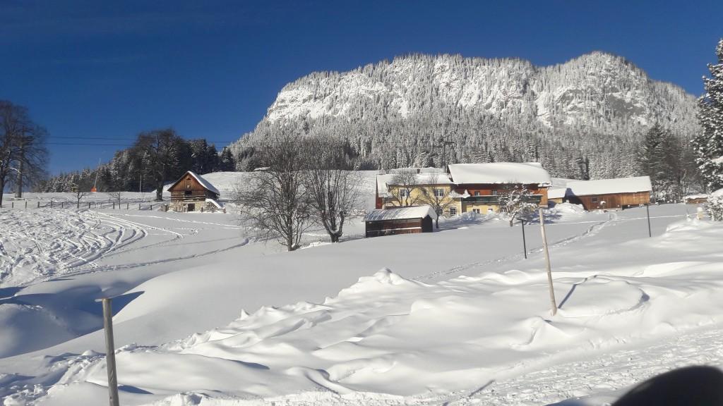 Freshly fallen snow in Tauplitz