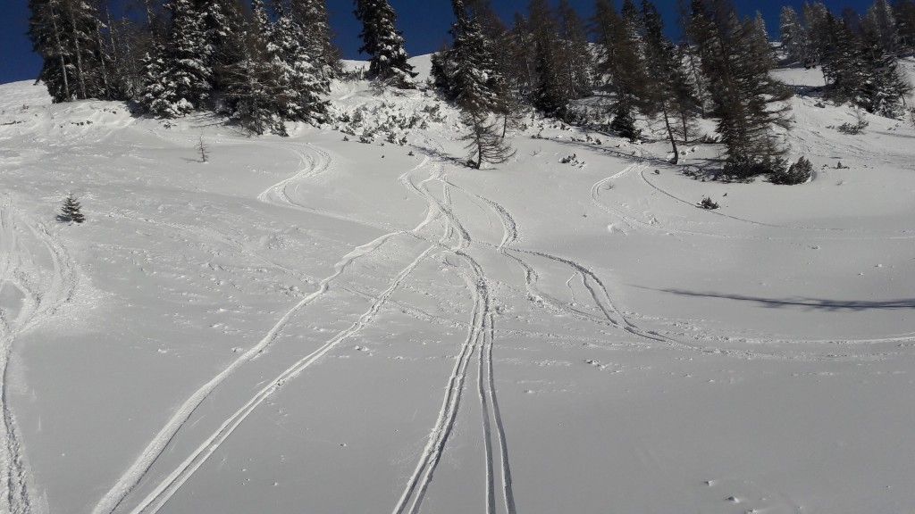 Freeride skiing in Tauplitz