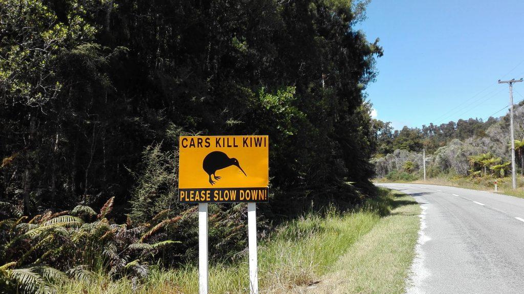 Kiwi driving sign
