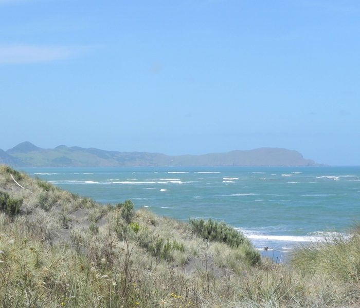 Traveling around the Northern Island of New Zealand