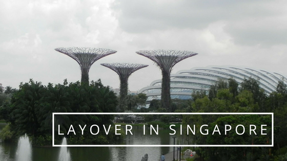 Stopping in Singapore for 7 hours layover